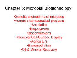 Chapter 5: Microbial Biotechnology