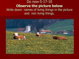 Do now-5-17-10 Observe the picture below and  non living things.