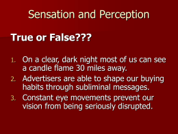 Sensation and Perception True or False???