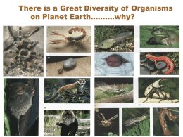 There is a Great Diversity of Organisms on Planet Earth……….why?