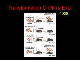 Griffith's Expt Transformation- 1928