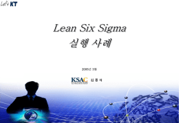 Lean Six Sigma 실행 사례