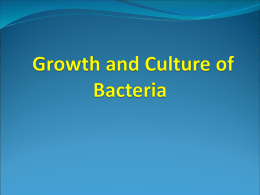 #2 Growth Culture of Bacteria