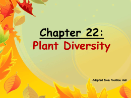 Introduction to Plants.ppt