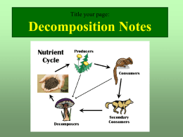 Decomposition Notes.ppt