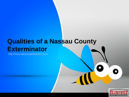 What are The Top Qualities of a Nassau County Exterminator